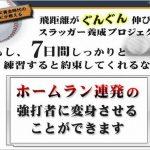 バッティングDVD「7日間スラッガー養成プロジェクト」